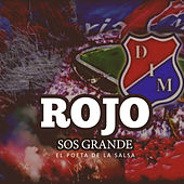 Play & Download Rojo Sos Grande by Poeta | Napster