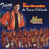 Los Dos Grandes de Tierra Caliente by Various Artists
