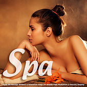 Spa Music for Massage Wellness & Relaxation Songs for Healing Yoga Meditation & Peaceful Sleeping by S.P.A