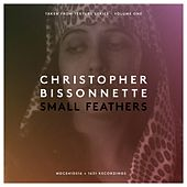 Small Feathers by Christopher Bissonnette