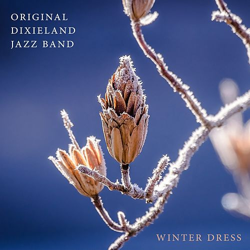 Play & Download Winter Dress by Original Dixieland Jazz Band | Napster