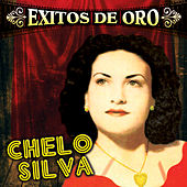 Play & Download Exitos de Oro by Chelo Silva | Napster