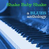 Shake Baby Shake: A Blues Anthology by Various Artists