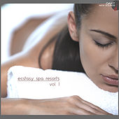 Play & Download Ecstasy Spa Resorts, Vol. 1 (QAXT New Sounds) by Various Artists | Napster