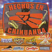 Play & Download Hechos en Chihuahua by Various Artists | Napster