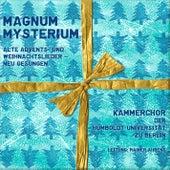 Magnum Mysterium (Alte Advents- und Weihnachtslieder neu gesungen) by Kammerchor der Humboldt-Universität zu Berlin