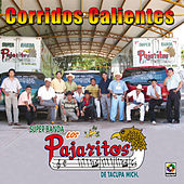 Play & Download Corridos Calientes by Los Pajaritos De Tacupa | Napster