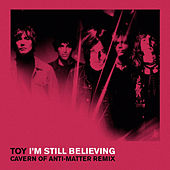I'm Still Believing (C.O.A.M Remix) by Toy