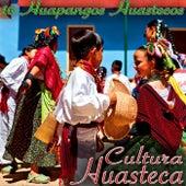 Play & Download 16 Huapangos Cultura Huasteca by Various Artists | Napster