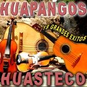 19 Grandes Exitos Huapangos Huastecos by Various Artists