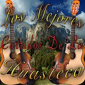 Play & Download Los Mejores Corridos de la Huasteca by Various Artists | Napster