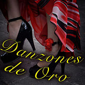 Play & Download Danzones de Oro by Various Artists | Napster