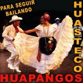 Play & Download Para Seguir Bailando Huapangos Huastecos by Various Artists | Napster