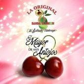 Play & Download El Mayor de Mis Antojos by La Arrolladora Banda El Limon | Napster