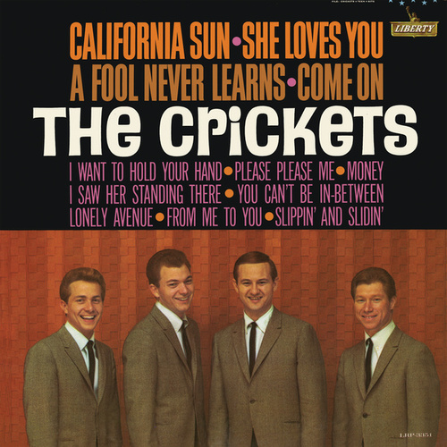Play & Download California Sun - She Loves You by Bobby Vee | Napster