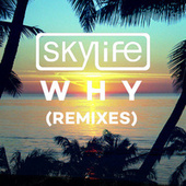 Play & Download Why by The Sky Life  | Napster