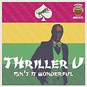 Isn't It Wonderful - Single by Thriller U