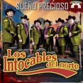 Play & Download Sueno Precioso by Los Intocables Del Norte | Napster
