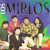 Play & Download Como Amiga by Los Mirlos | Napster