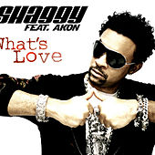 Play & Download What's Love by Shaggy | Napster
