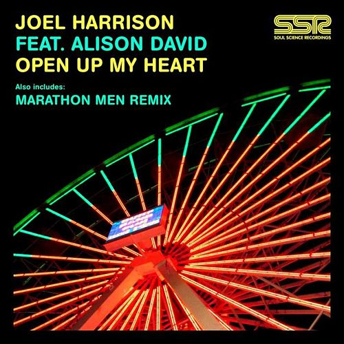 Play & Download Open Up My Heart by Joel Harrison | Napster