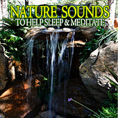Play & Download Nature Sounds To Help Sleep & Meditate by Nature Ambience | Napster