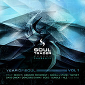 Year of Soul Vol 1 by Various Artists