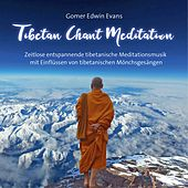 Play & Download Tibetan Chant Meditation by Gomer Edwin Evans | Napster