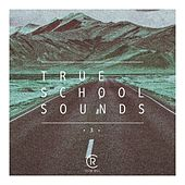 True School Sounds, Vol. 3 by Various Artists