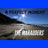 Play & Download A Perfect Moment by Los Marauders | Napster