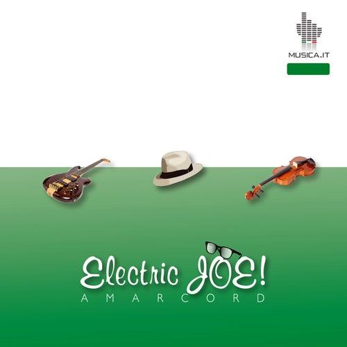 Electric Joe by Joe Venuti