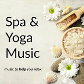 Spa & Yoga Music by Various Artists