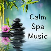 Play & Download Calm Spa Music by Various Artists | Napster