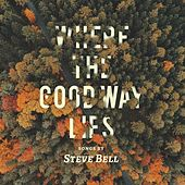 Play & Download Where the Good Way Lies by Steve Bell | Napster
