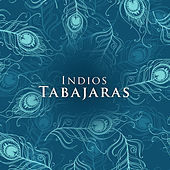 Play & Download Indios Tabajaras by Los Indios Tabajaras | Napster