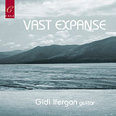 Vast Expanse by Gidi Ifergan