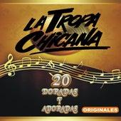 Play & Download 20 Doradas Y Adoradas Originales by La Tropa Chicana | Napster