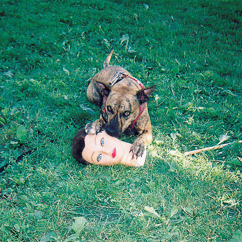 Cody by Joyce Manor