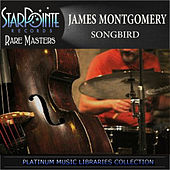 Songbird by James Montgomery
