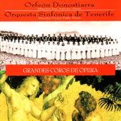 Play & Download Mozart: La Flauta Mágica, Weber: El Cazador Furtivo - Grandes Coros de Ópera by Orfeón Donostiarra | Napster