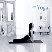 Play & Download for Yoga by Various Artists | Napster