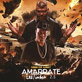 Play & Download Amarrate las Timber (2.5) [feat. Almighty] by Farruko | Napster