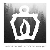 Play & Download It's Not over Yet by Owls In the Attic | Napster