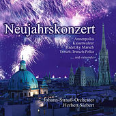 Play & Download Neujahrskonzert by Various Artists | Napster