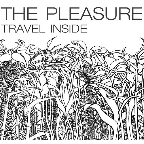 Travel Inside by Pleasure