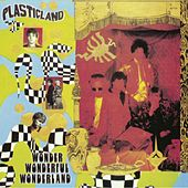 Play & Download Wonder Wonderful Wonderland by Plasticland | Napster