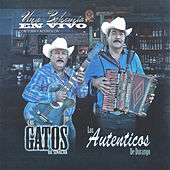 Play & Download Una Bohemia en Vivo Con Tuba y Acordeon by Los Gatos De Sinaloa | Napster