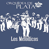 Play & Download Orquídea de Plata (Sonido Remasterizado) by Los Melódicos | Napster