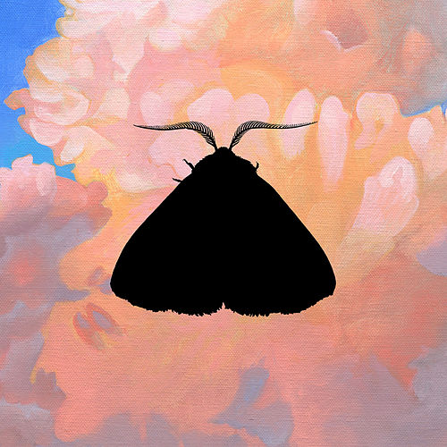 Play & Download Moth to the Flame (Olga Bell Remix) by Chairlift | Napster