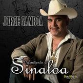 Defendiendo a Sinaloa by Jorge Gamboa (1)